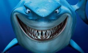 haai-tiburon